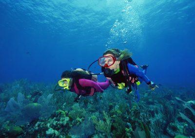 Buceo por los arrecifes de Cabo de Gata - Boutique Hotel el Tío Kiko