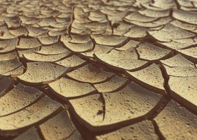 Desierto Almería temporada seca